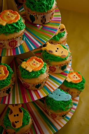 nolan-cupcakes